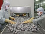 越南对中国虾类产品出口额达6480万美元