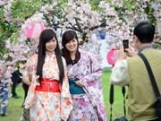 日本樱花节暨日本投资研讨会即将在同奈省举行