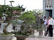 越南首都河内首次举行观赏生物节