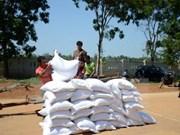 政府总理指导向嘉莱、老街两省无偿下拨975吨大米