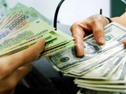 越南国家银行越盾兑美元中心汇率较前一日上涨5越盾