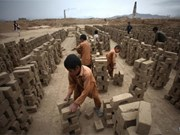 越南努力防止和减少童工现象