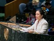 阮芳娥大使:越南一向高度重视保护和促进残疾人权利