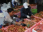 老街国际口岸海关对中国出口创造便利条件