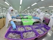 2016年越南原料虾再次紧俏