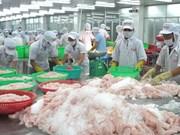 越南查鱼广受巴西消费者的喜爱