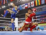 2016年越南全国泰拳锦标赛在清化省拉开战幕