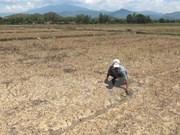 亚行为越南缓解灾情提供资金援助