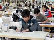 河内市力争每年为10万多名年轻人争取就业机会