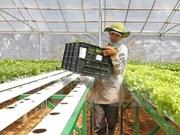 近40家日本农业企业代表团赴河南省寻找商机
