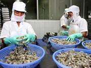 2016年前5个月越南对美国虾类出口增长17%