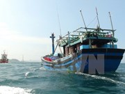 越南驻中国大使馆对在北部湾湾口外海域遇险的越南公民开展领事保护工作