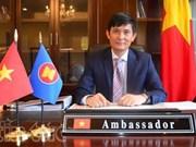 越南为东盟的发展进程作出重要贡献