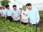 武德儋副总理调研北宁省  特别强调做好食品安全教育宣传工作