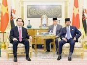 越南国家主席陈大光与文莱苏丹哈桑纳尔•博尔基亚举行会谈