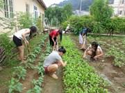 越南政府和国际组织携手帮助获解救的被拐受害者重新融入社会