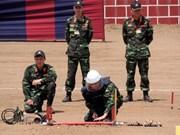 越南军队参加东盟防长扩大会人道主义援助救灾与军事医学联合演练