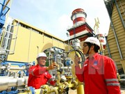 仁泽二号热电厂为国家电网提供250亿度电