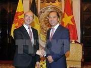 推动越南与瓦隆大区及法语区联邦合作计划有效开展