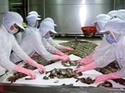 越南虾类对中国出口呈现起色
