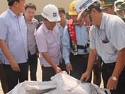 越南工商部未许可河静兴业钢铁有限责任公司进口160吨铝土矿泥