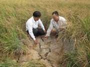 越南政府关于预防干旱和海水入侵项目资金分配的指导意见