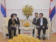 越南国会主席阮氏金银会见柬埔寨首相洪森