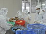 2016年越南北部地区工业、手工业及贸易展将在广宁省下龙市举行