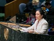 越南呼吁各赞助国继续履行发展援助承诺