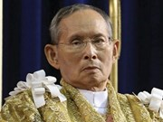 河内市领导前往泰国驻越大使馆吊唁泰国国王普密蓬逝世