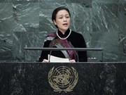 越南承诺促进和保护人权