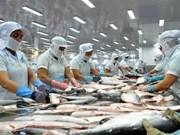中国成为越南查鱼第2大出口市场