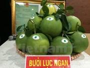 越南北部首次举办水果节