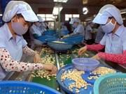 2016年越南腰果出口额有望达到创纪录的27亿美元