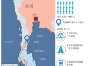 泰国南部水灾:受灾人数为100多万人