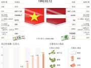 越南与拉脱维亚双边合作关系简介