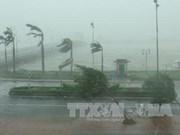 第十号台风登陆越南北部沿海地区 造成重大损失