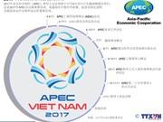 图表新闻:2017年APEC领导人会议周日程