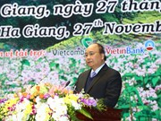 越南政府总理阮春福出席河江省投资促进会(组图)