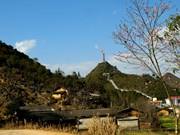 越南河江省春天壮美迷人的风景(组图)