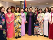越南国会主席阮氏金银走访越南驻荷兰大使馆(组图)