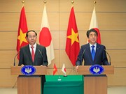 越南国家主席陈大光与日本首相安倍晋三举行会谈(组图)