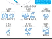 图表新闻:ACMECS 和越南的参与