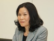 越南驻荷兰大使吴氏和主持海牙东盟委员会7月例行会议