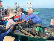 中国船只攻击越南   渔船越南渔业工会对此表示强烈反对