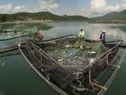 泰国太平洋海产加工有限公司拟定在越南成立联营企业