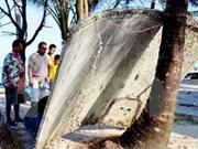 泰国发现疑似MH370残骸