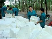 2016年1月份越南橡胶出口量同比增长13%