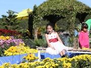 春节假期大叻市吸引成千上万游客
