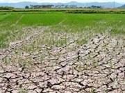 越南政府协助全国34个省市克服旱灾及海水入侵带来的影响